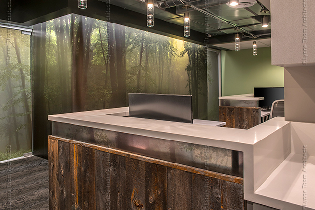 Dental Office Interior Design and Architecture